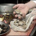 clam-boil-bags-100-pack-10